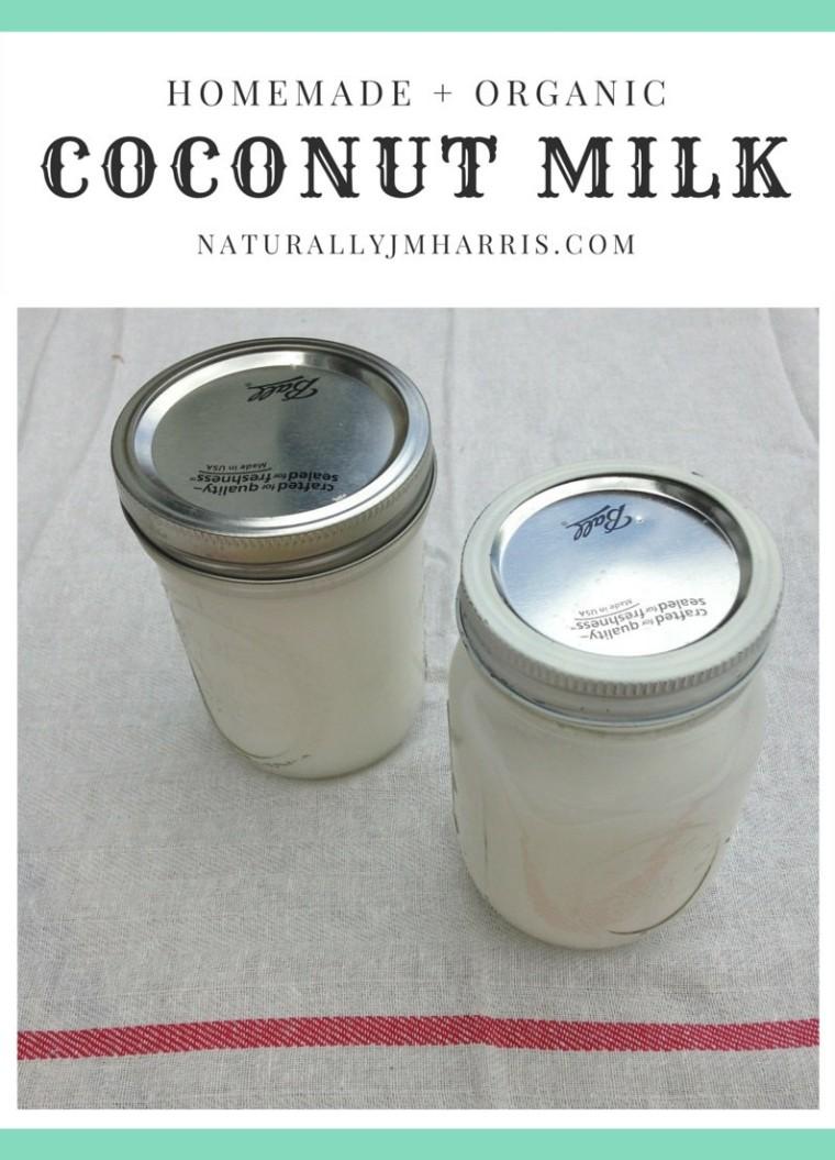 homemade organic coconut milk